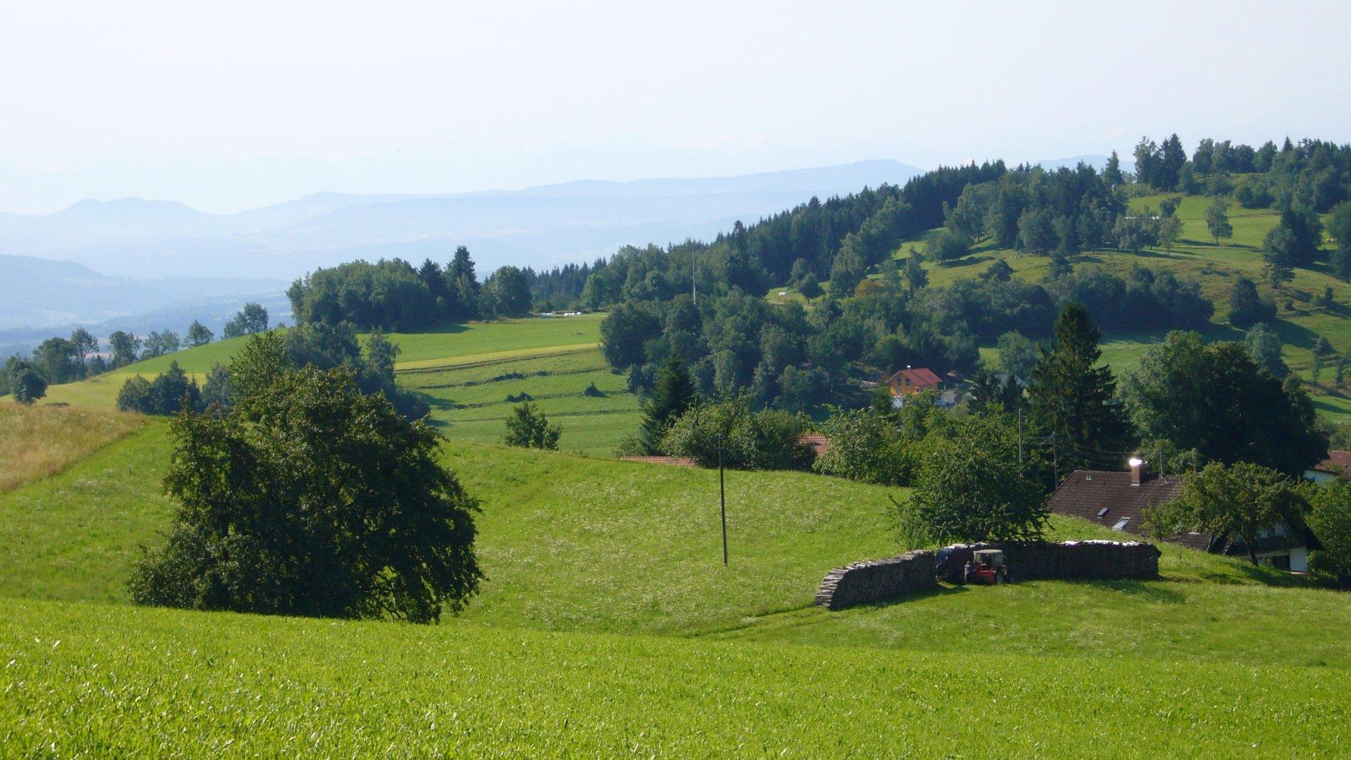 Zell im Wiesental, Ortsteil Gresgen