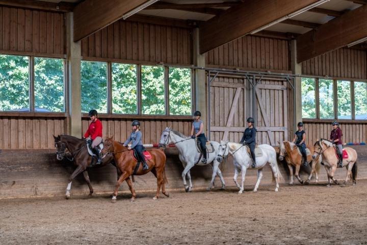Sechs Personen reiten auf Pferden in einer Reihe hintereinander her. Sie befinden sich in einer Halle mit Holzverkleidung und großen Fenstern, der Boden besteht aus feinem Holzspan.