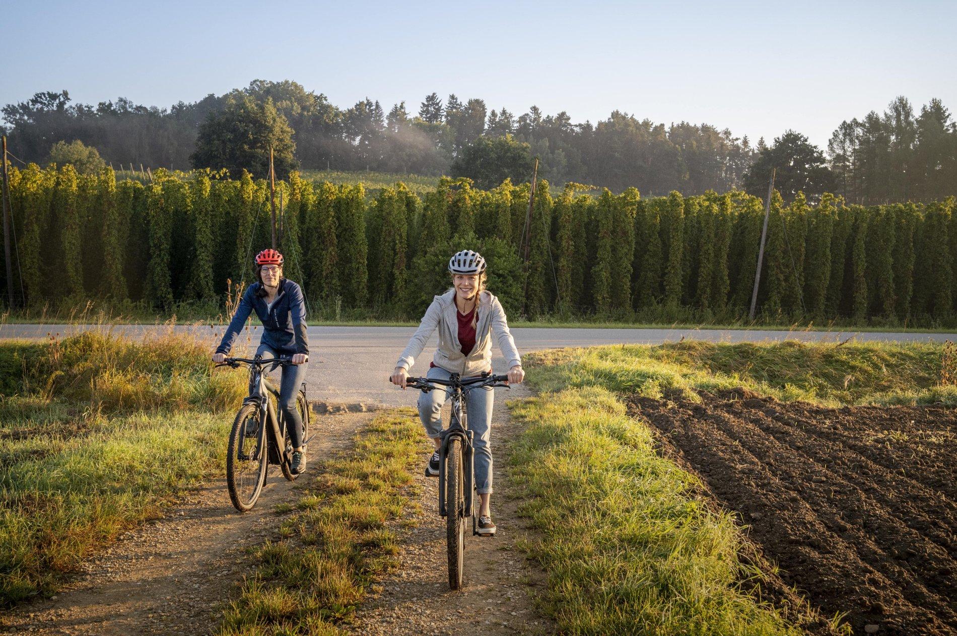 Radfahrer in der Hallertau