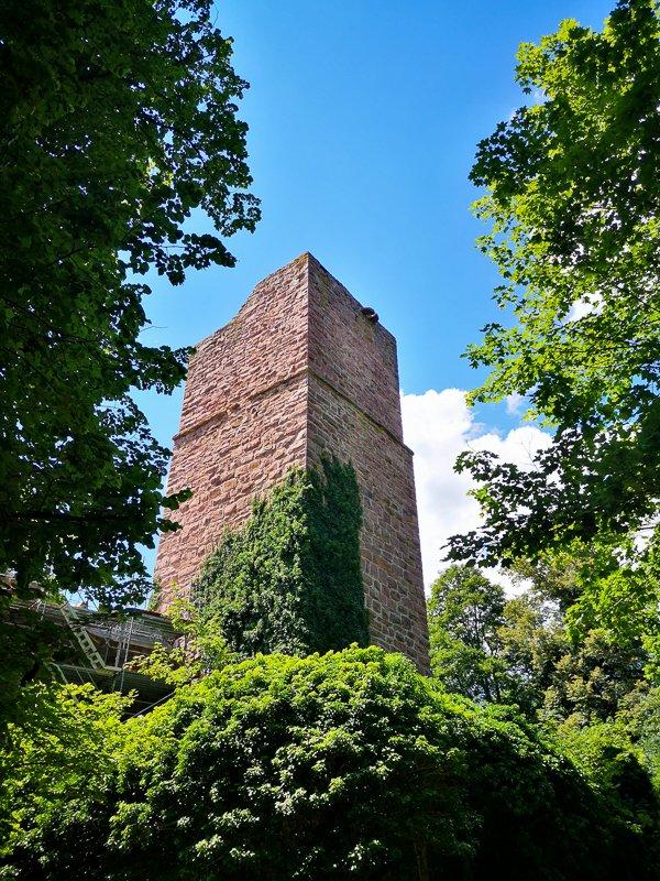 Die Burgruine Liebeneck mit blauem Himmel und Rankpflanzen