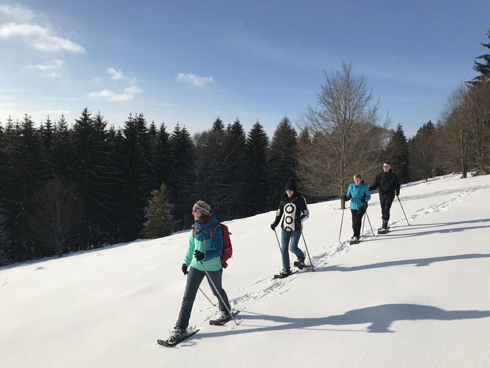 Vier Schneeschuhwanderer*innen laufen in einer Reihe mit kleinem Abstand hintereinander her und lächeln. Sie ziehen Spuren in den Schnee. Im Hintergrund ist Wald. Der Himmel ist blau mit ein paar Wolken am linken Bildrand.