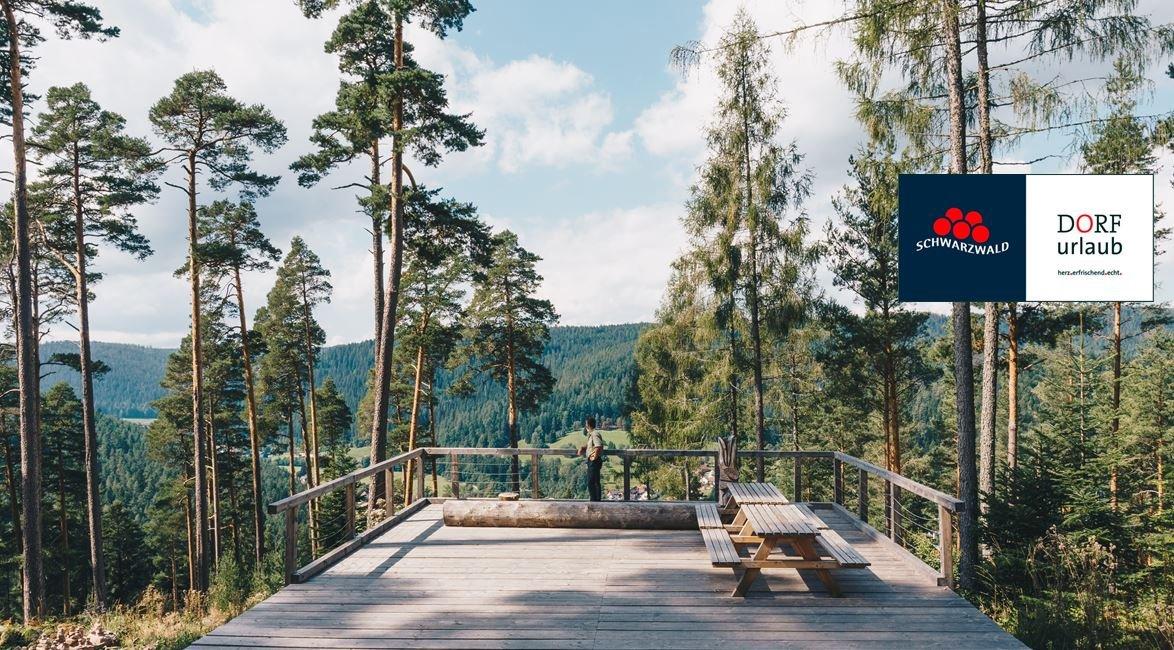 Aussichtsplattform am Heidelbeerweg