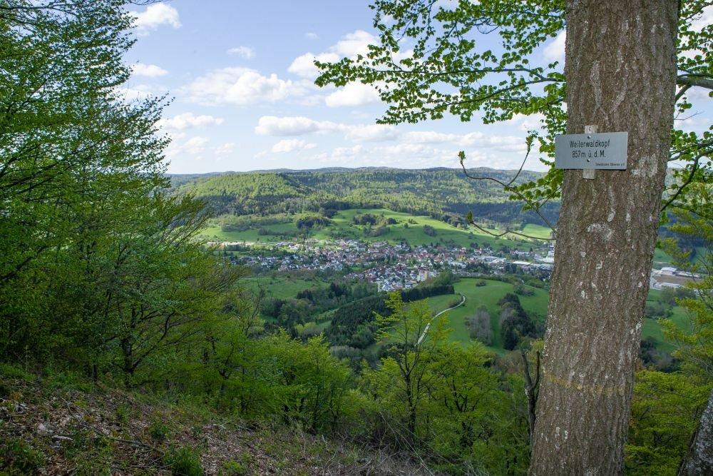 Weilerwaldkopf - Aussicht in Killertal