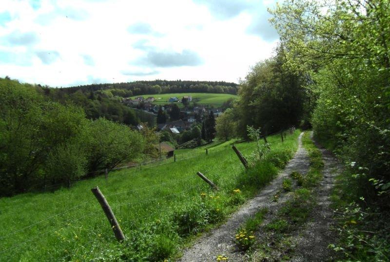 Wanderweg Romantisches Wildbachtal