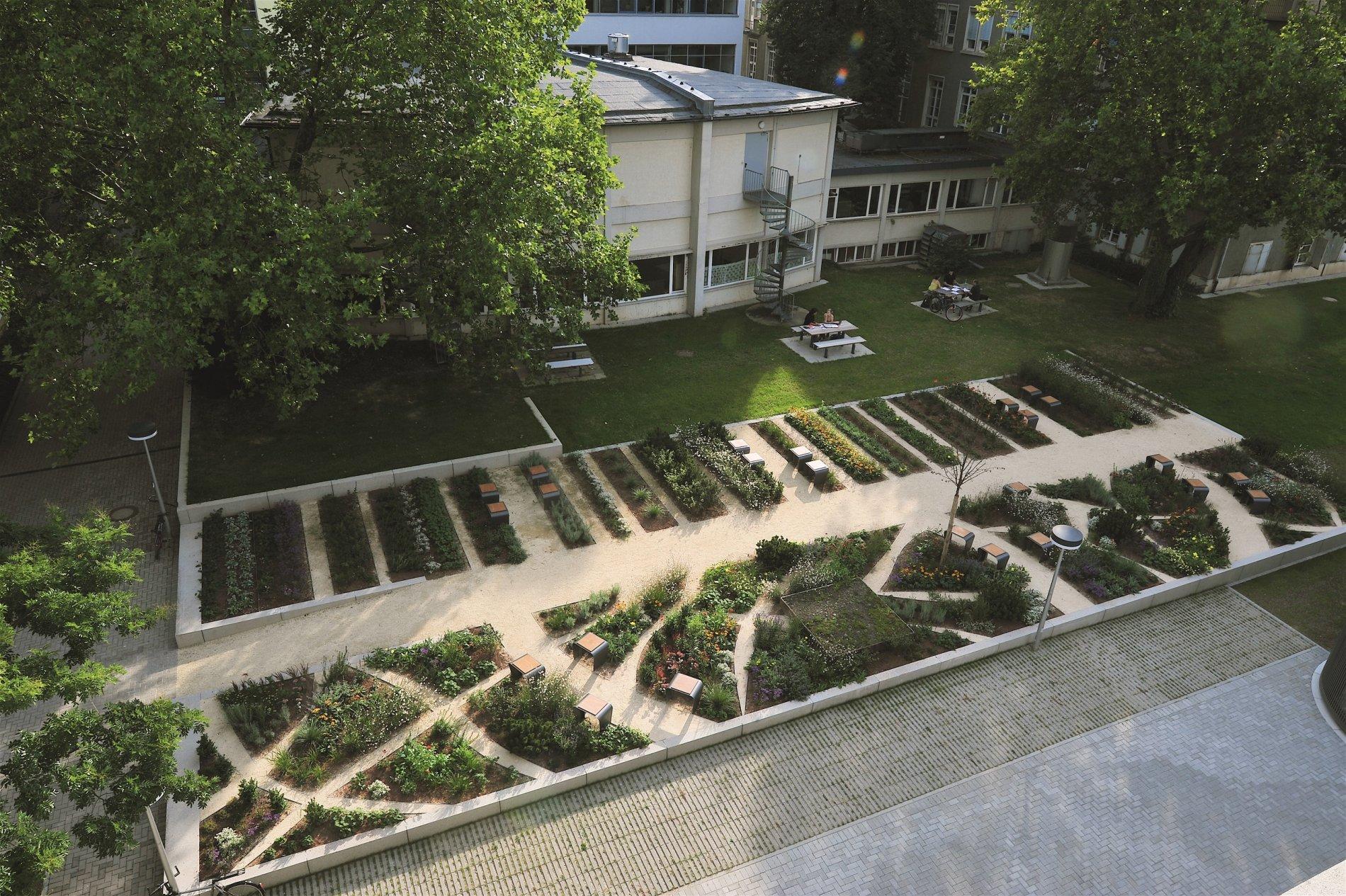 Garten der Physik
