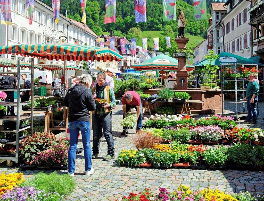 Marktplatz in Wolfach