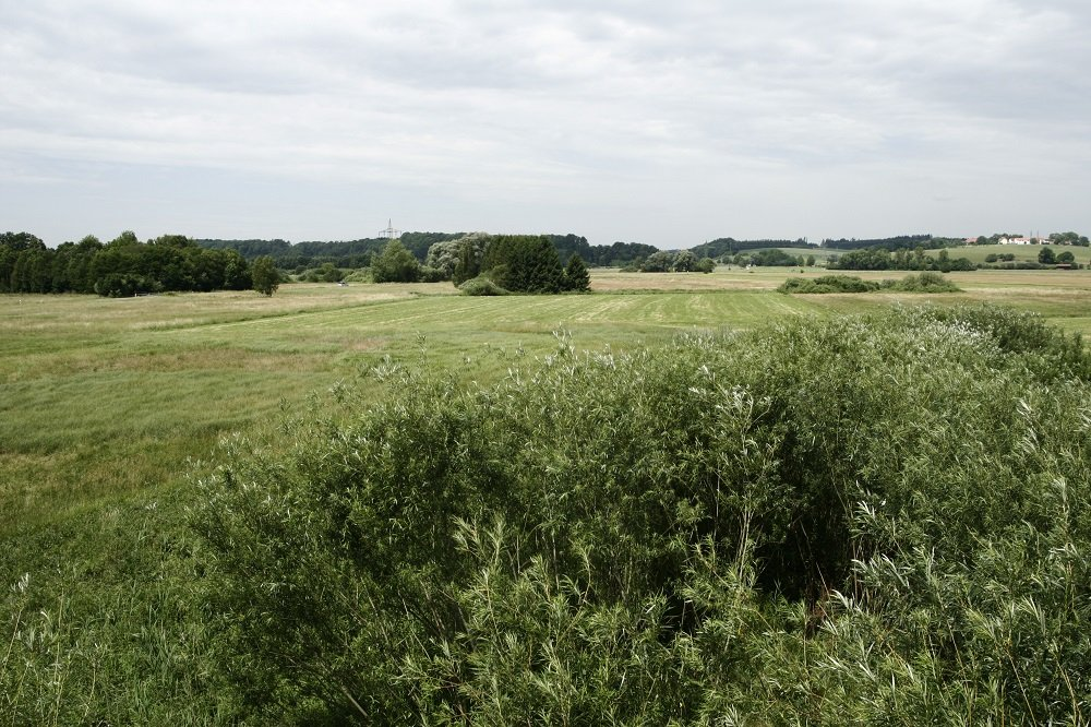 Landschaftsschutzgebiet Freisinger Moos