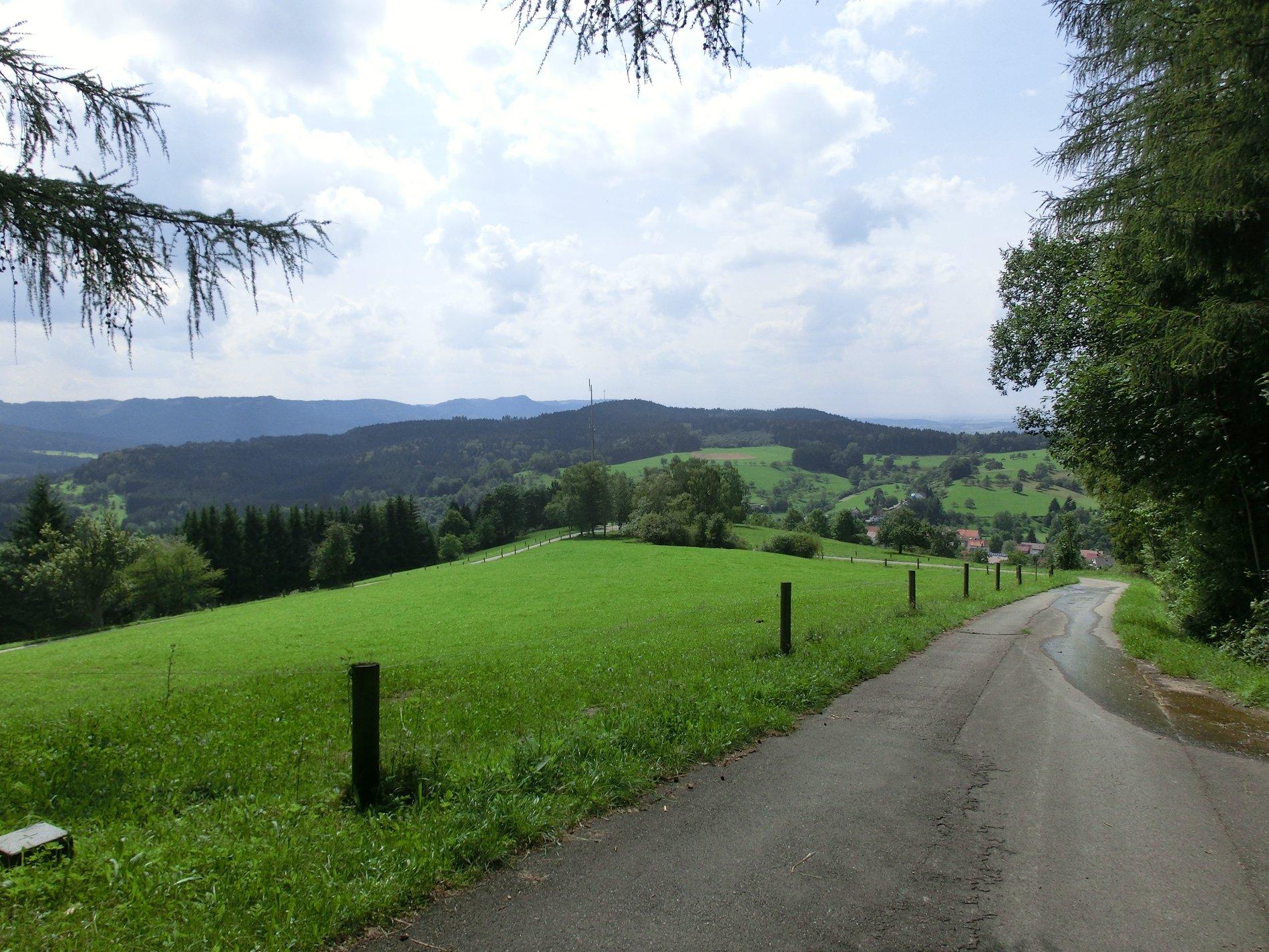 Wanderweg mit Blick über grüne Wiesen auf die Berge der Zollernalb
