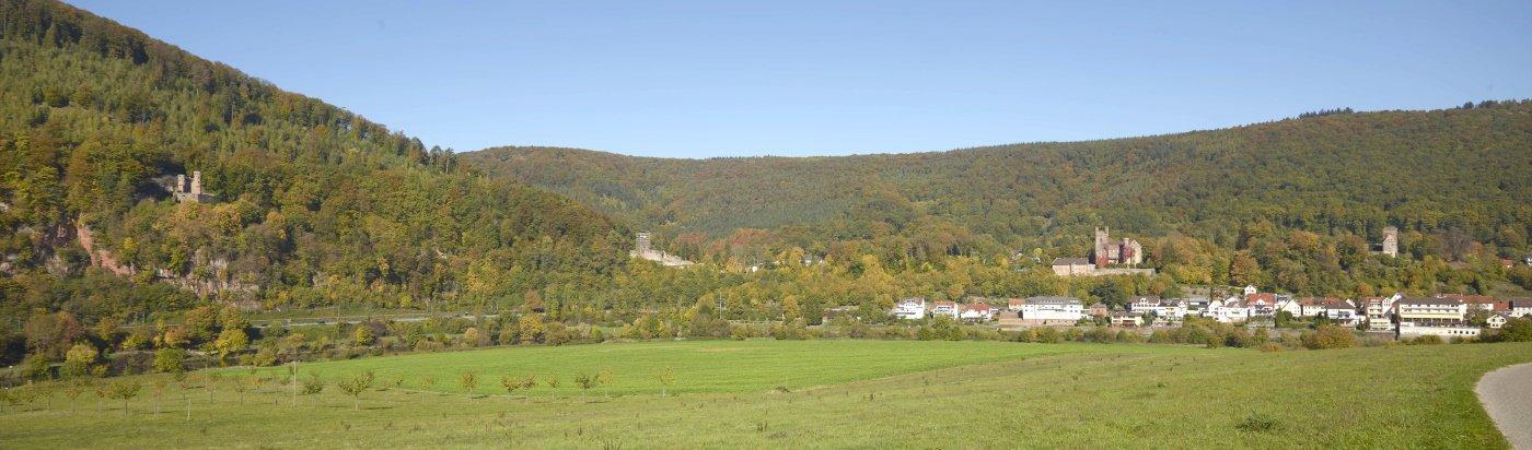Vierburgenstadt Neckarsteinach