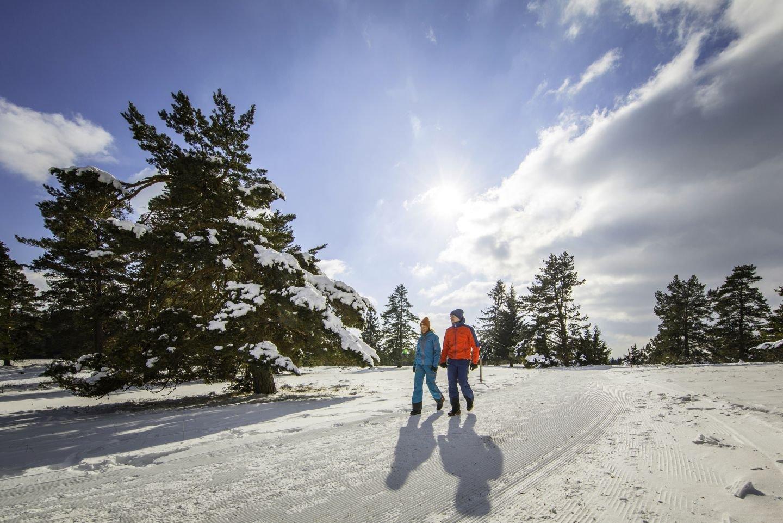 Winterwandern auf dem Heersberg