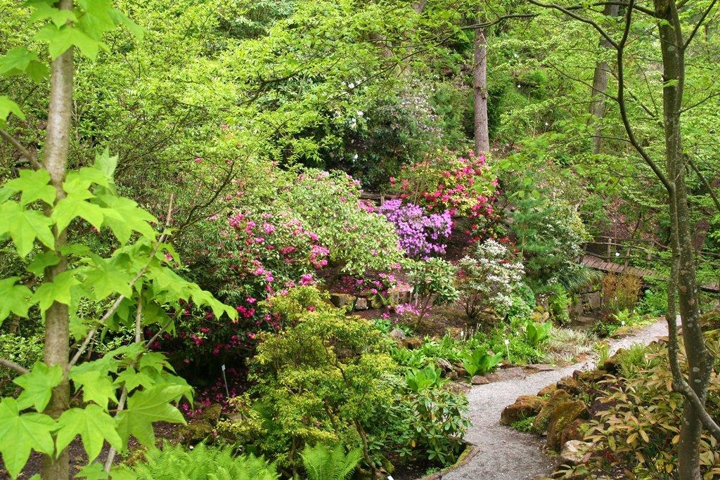 Botanischer Garten der Universität Tübingen: Lehrgarten und Erholungsoase zugleich