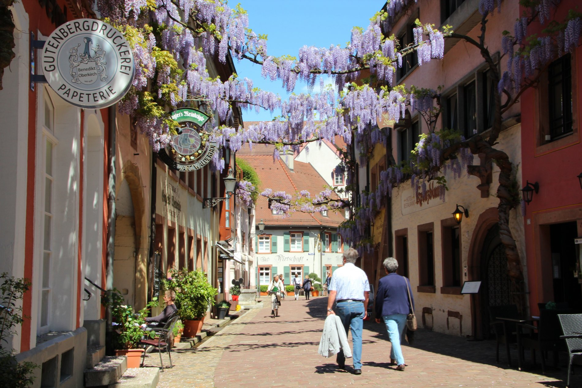 Freiburg Konviktstraße im Sommer