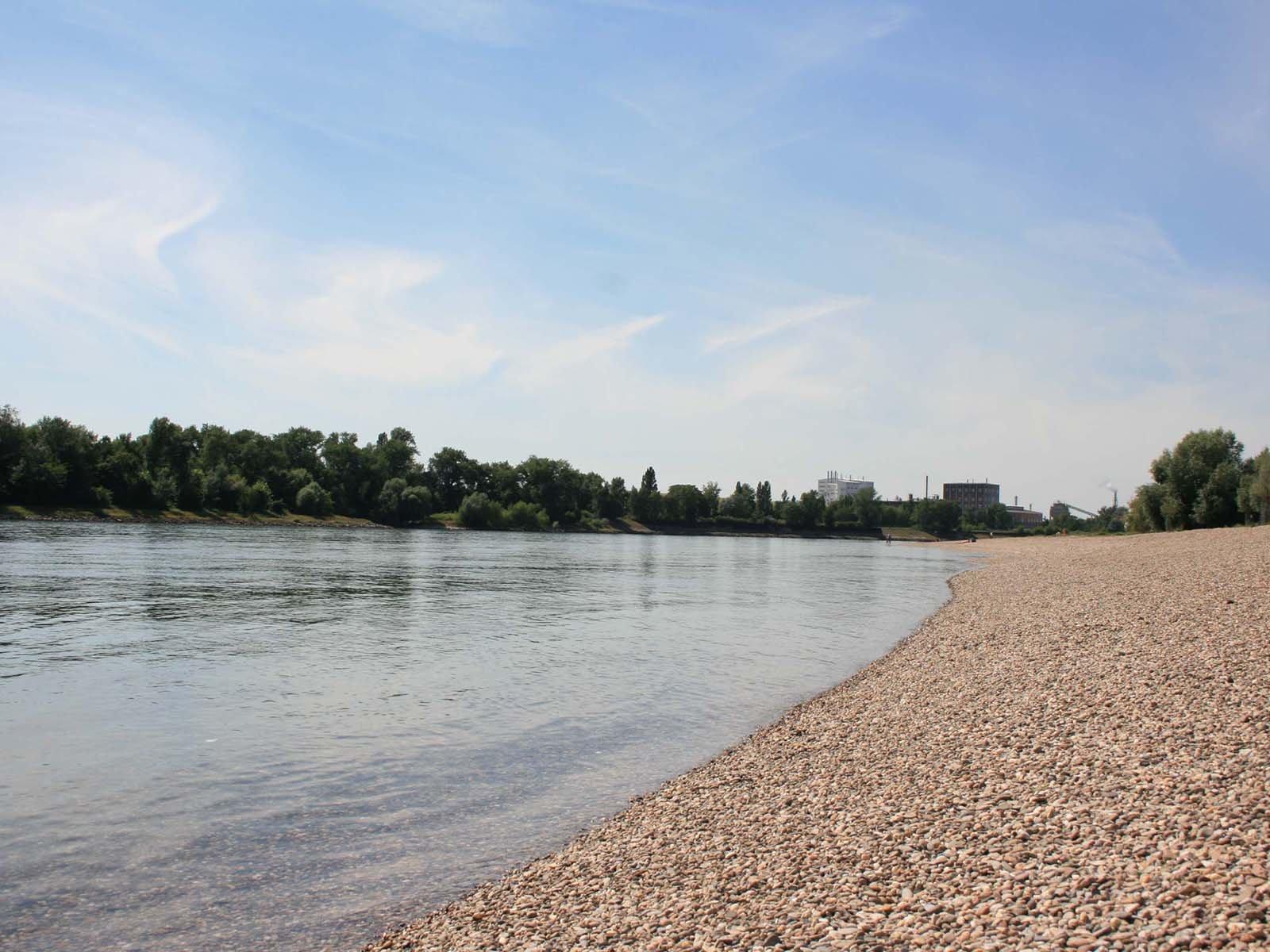 Rheinufer am Strandbad, Mannheim
