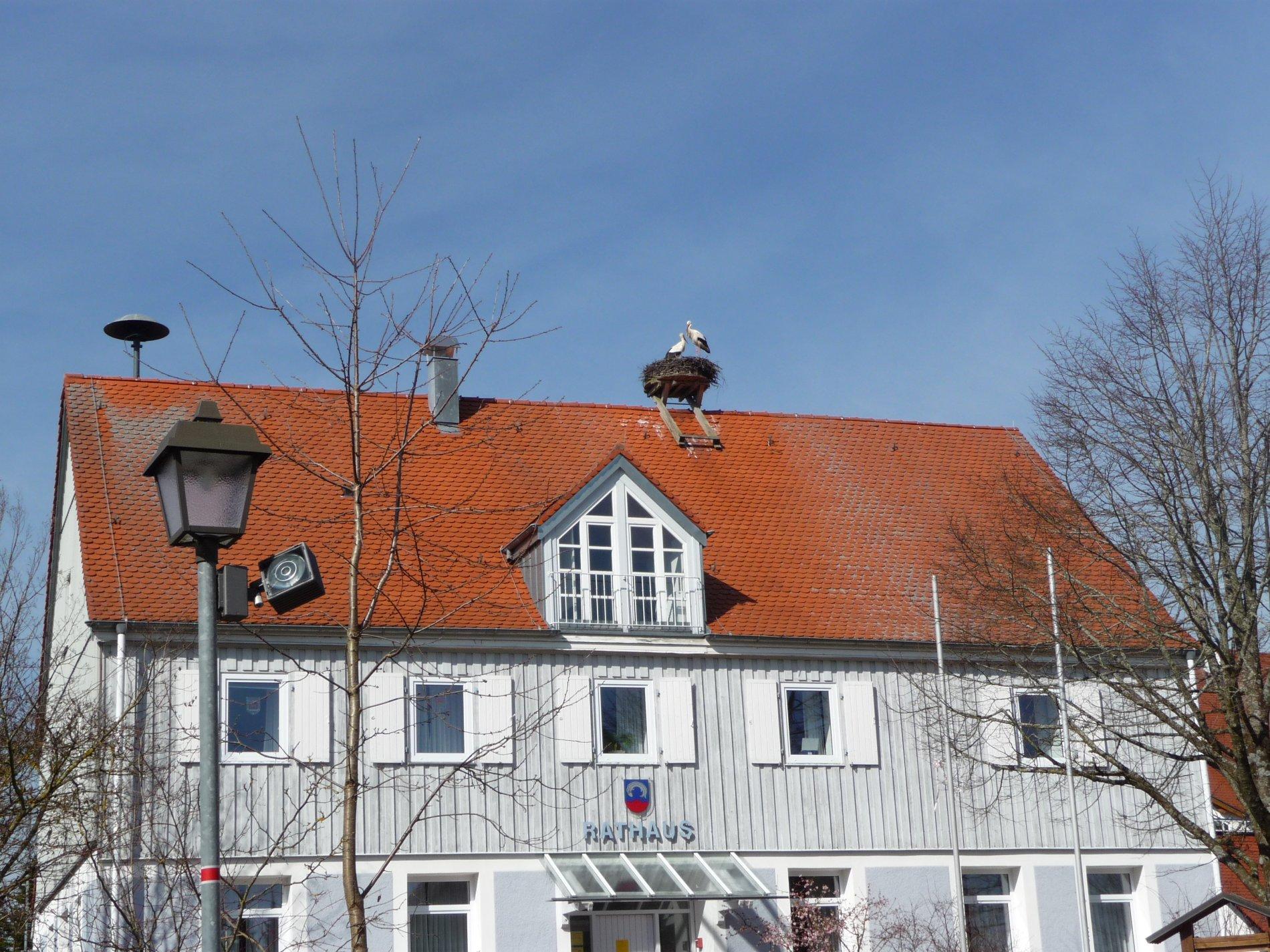 Rathaus Illmensee mit Störchen
