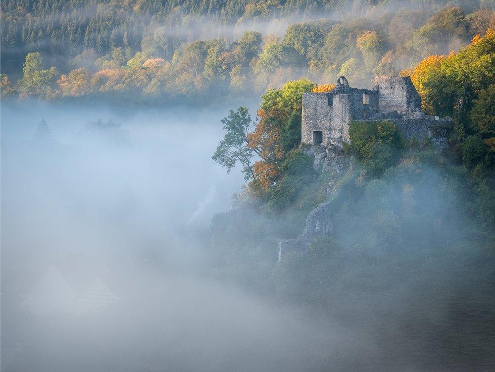 Eine Burgruine ragt aus dem Nebel. Der Wald färbt sich schon langsam in bunten leuchtenden Herbstfarben.