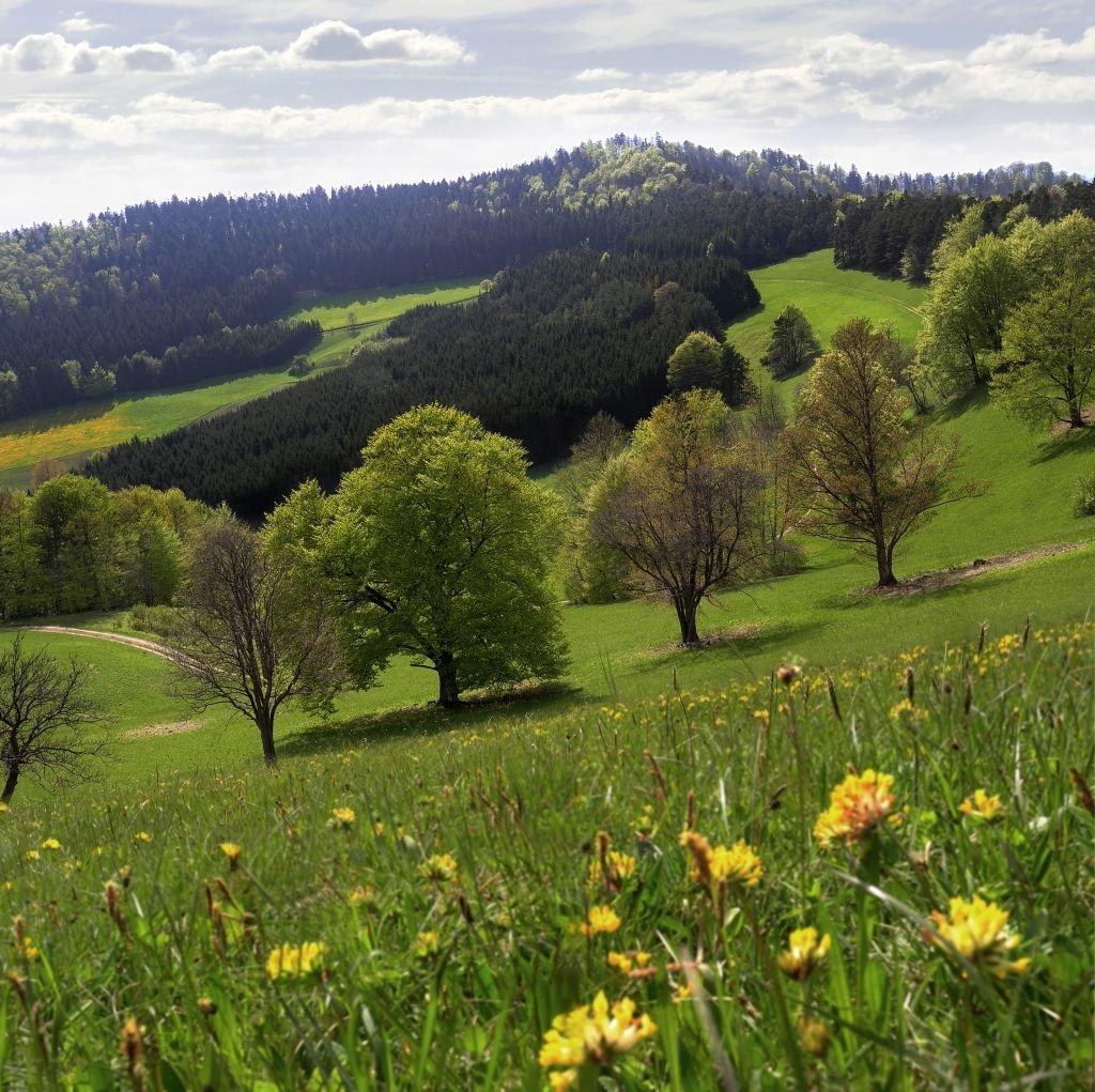 Naturschutzgebeit Irrenberg