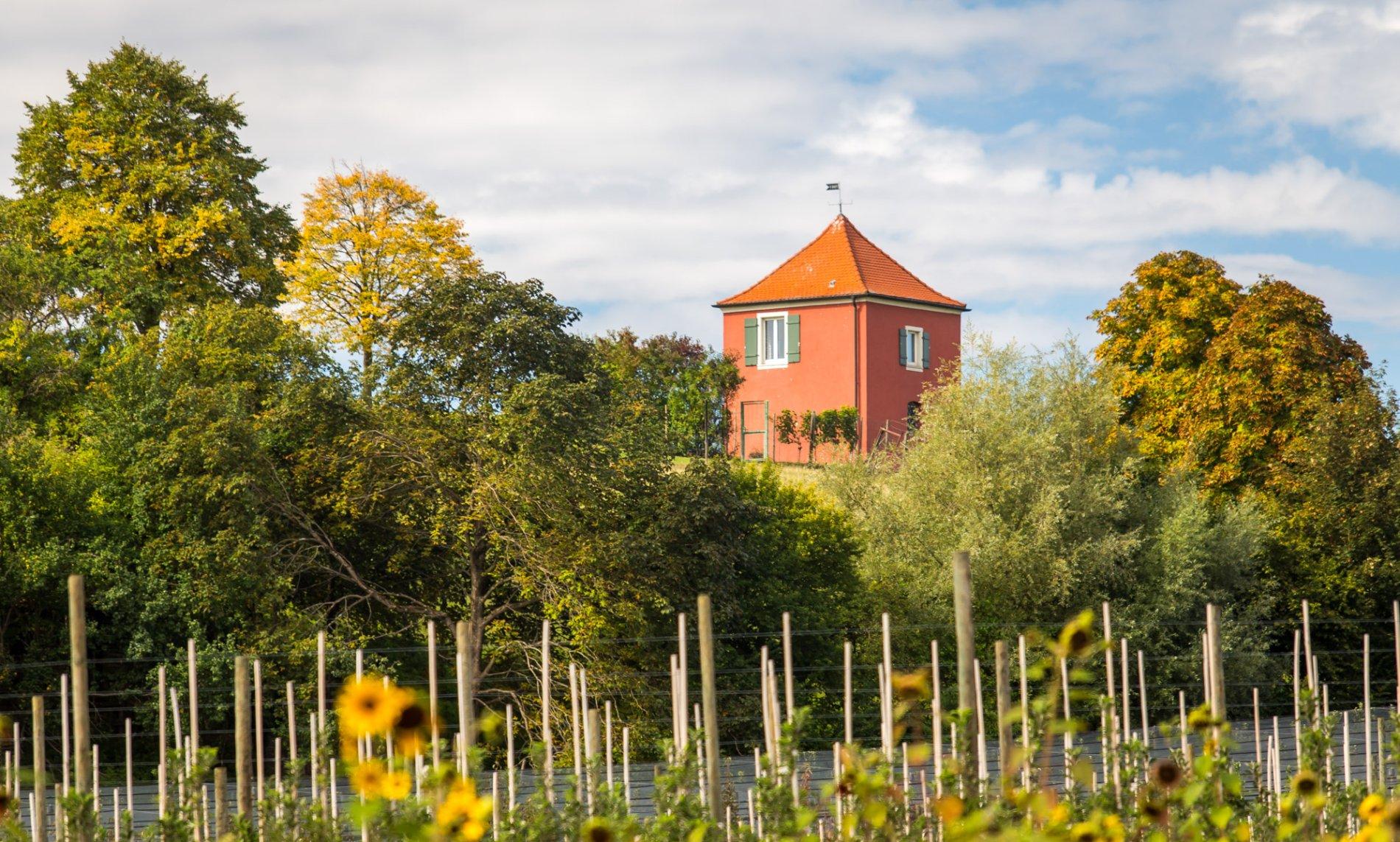 Aussichtpunkt Hohberg mit Bänken, Panoramatafel, Fahnen und Blick auf den Bodensee