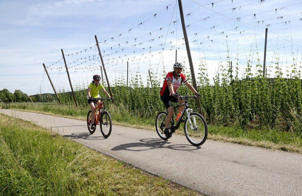 Radeln entlang der Hopfengärten am Nandlstädter Kulturradweg