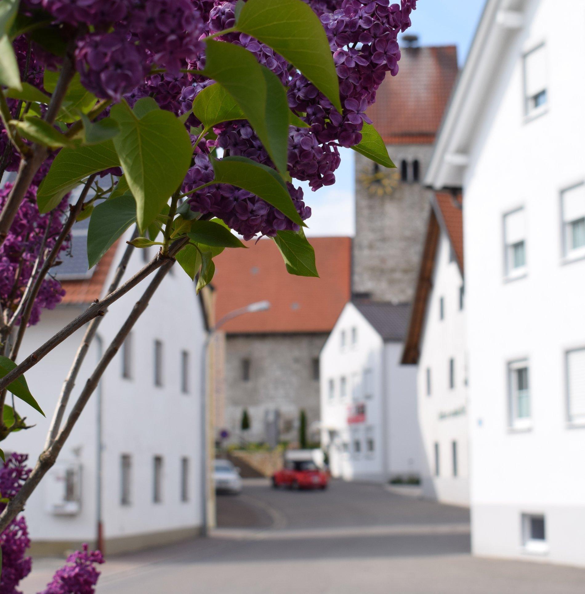 Blick auf die Trajansstraße in Bad Gögging