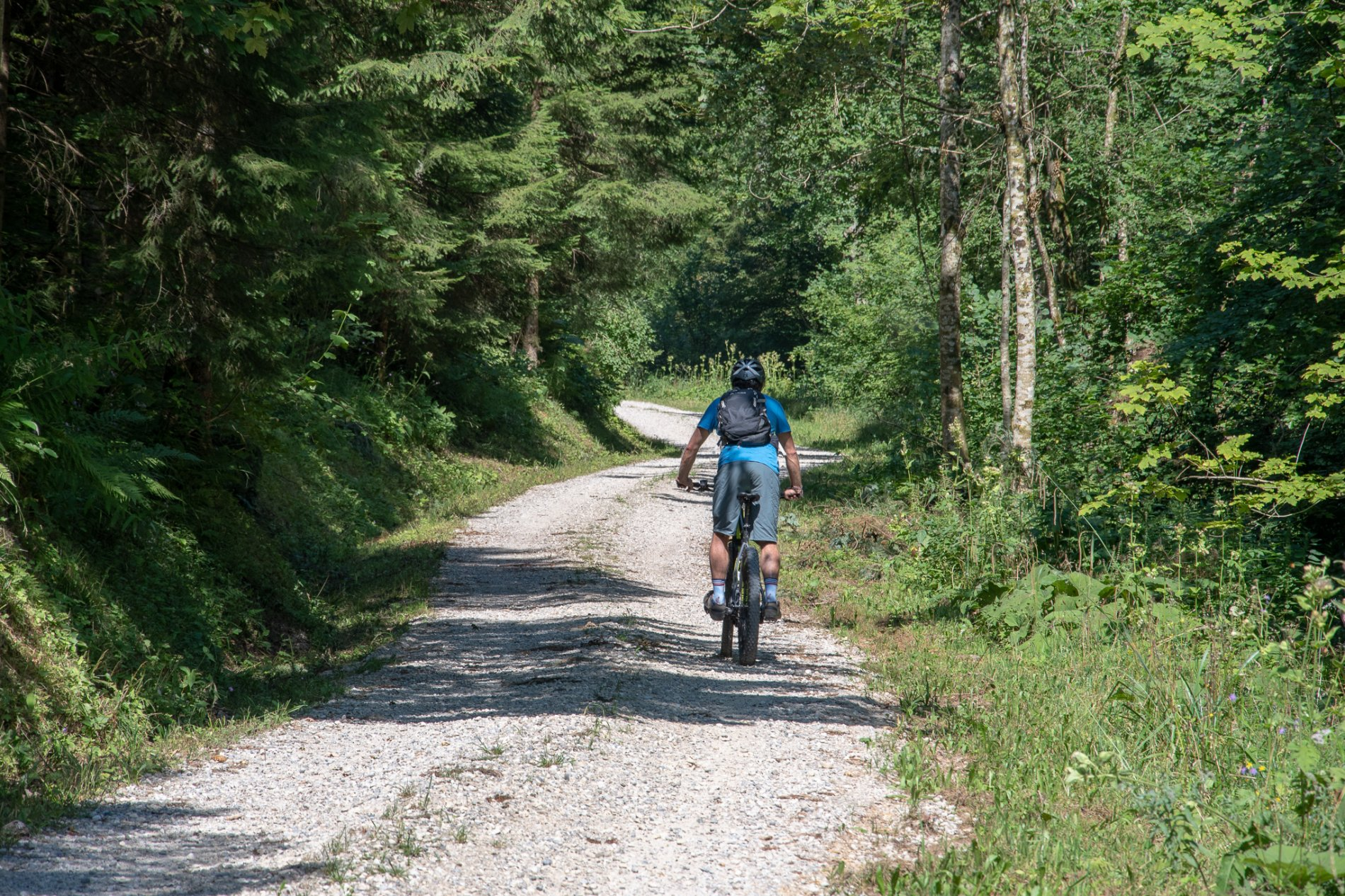 Mountainbiker auf dem Weg zum Zugerberg