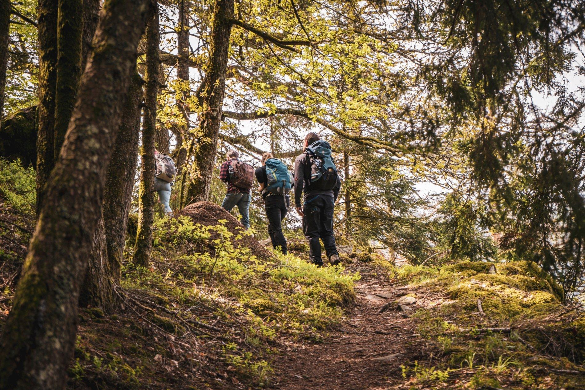 Wandern auf dem Rappenfelsensteig