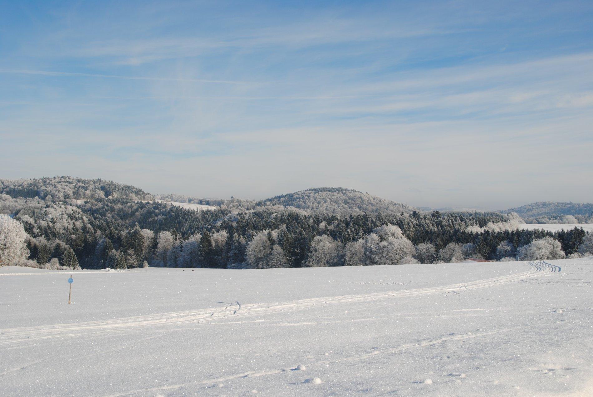 Skihang Burgbühl in Obernheim