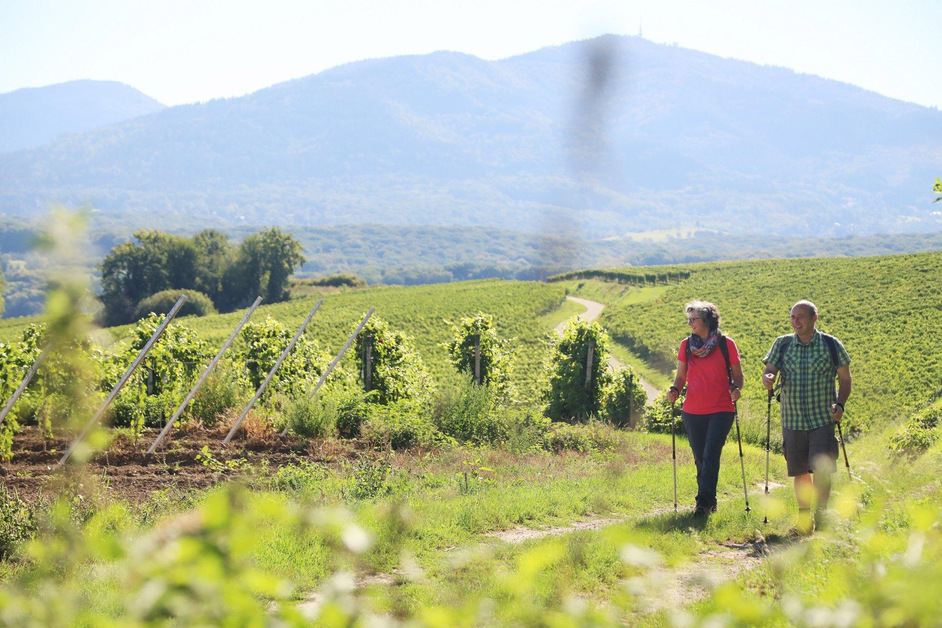 Schild Zähringer Wanderweg