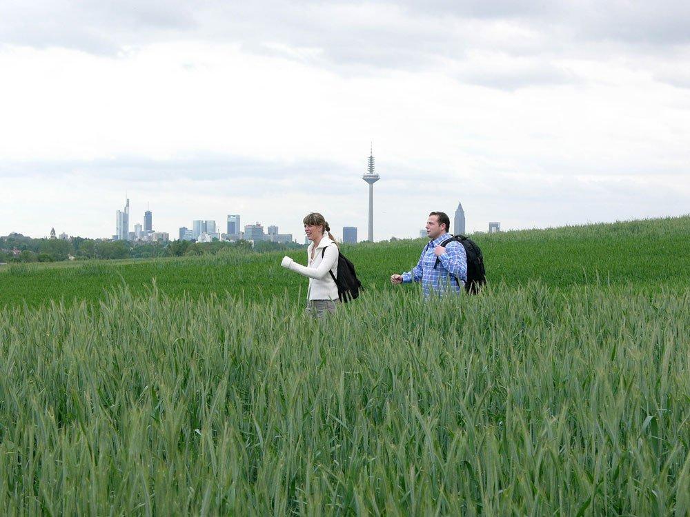 Frankfurt Green Belt