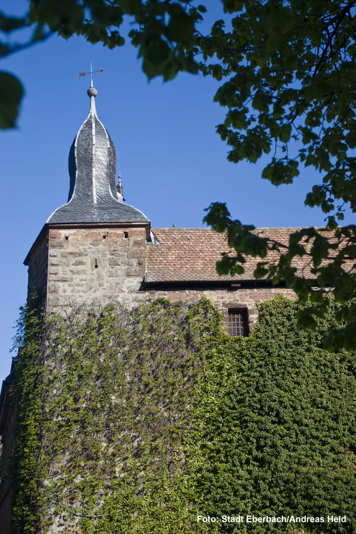 Blauer Hut in Eberbach