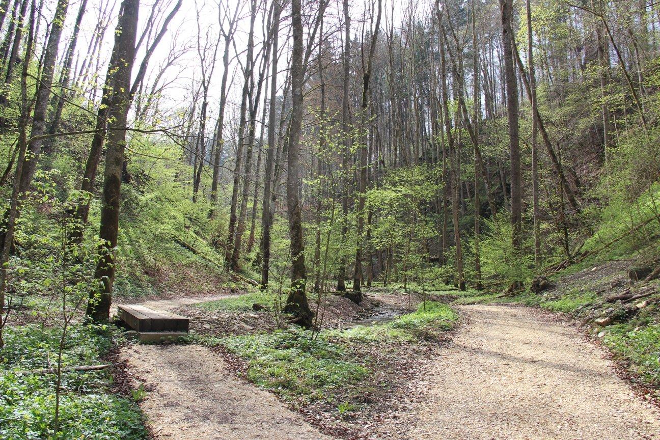 """Landschaftsschutzgebiet """"Krebsbachtal"""""""