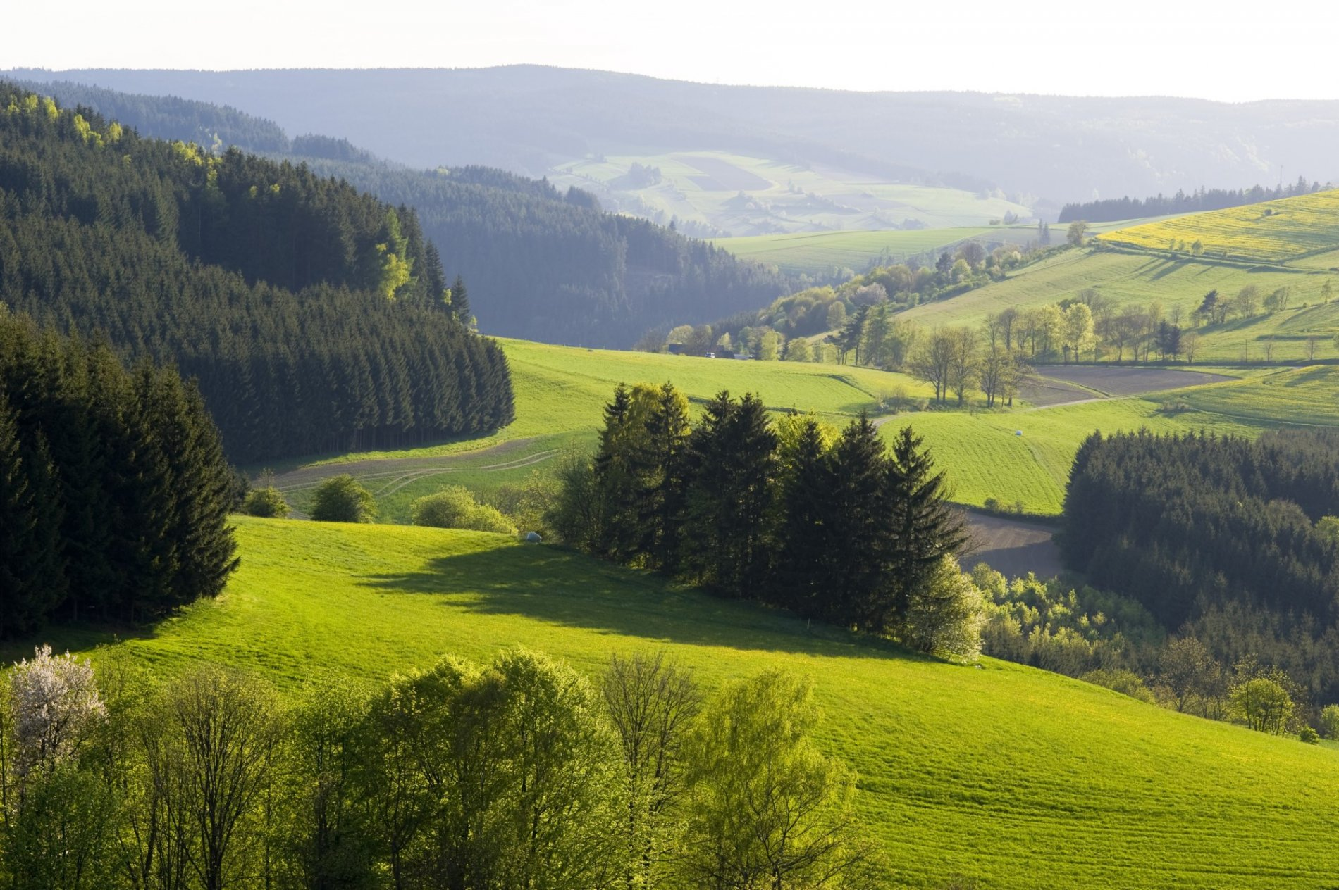 Frankenwaldlandschaft