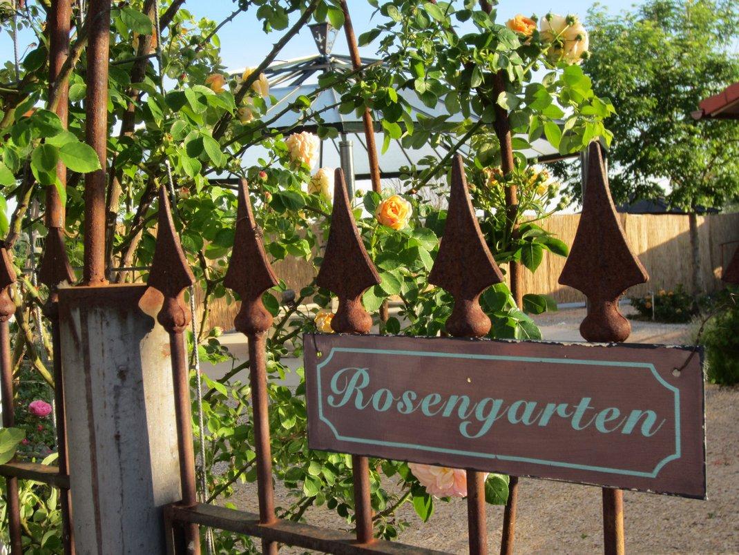 Ein Schild mit der Aufschrift Rosengarten hängt an einem verrosteten Zaun. Dahinter ein Garten mit mehreren Rosen.
