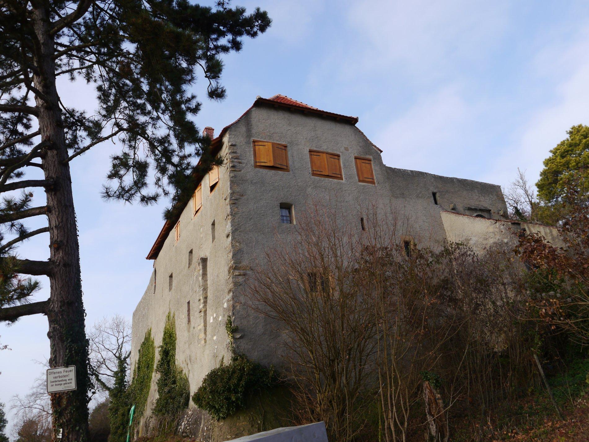 Burg (Hohen-) Friedingen im Dezember 2016