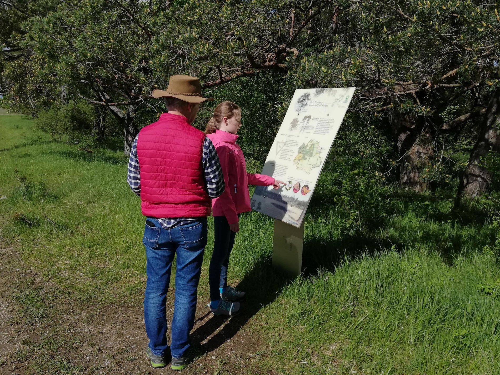 Informationstafel am Mallertshofer Holz auf dem Heidepfad