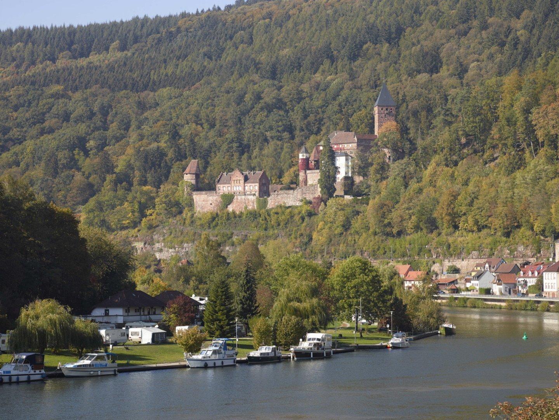 Blick auf Schloss Zwingenberg
