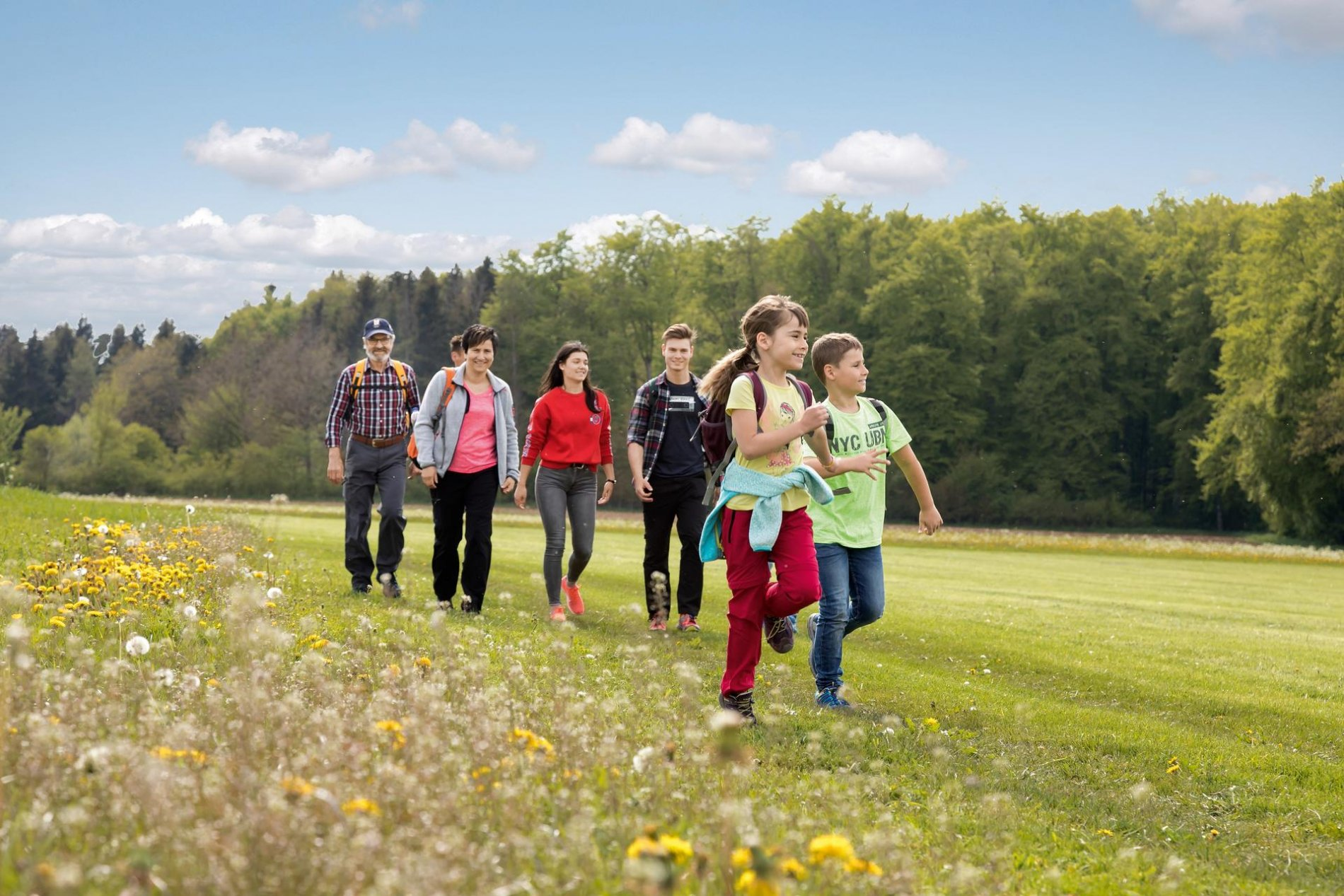 Drei Erwachsene, zwei Jugendliche und zwei Kinder laufen über eine Wiese mit Löwenzahn. Im Hintergrund ist Wald. Es ist sonnig, warm und der Himmel nur leicht bewölkt.