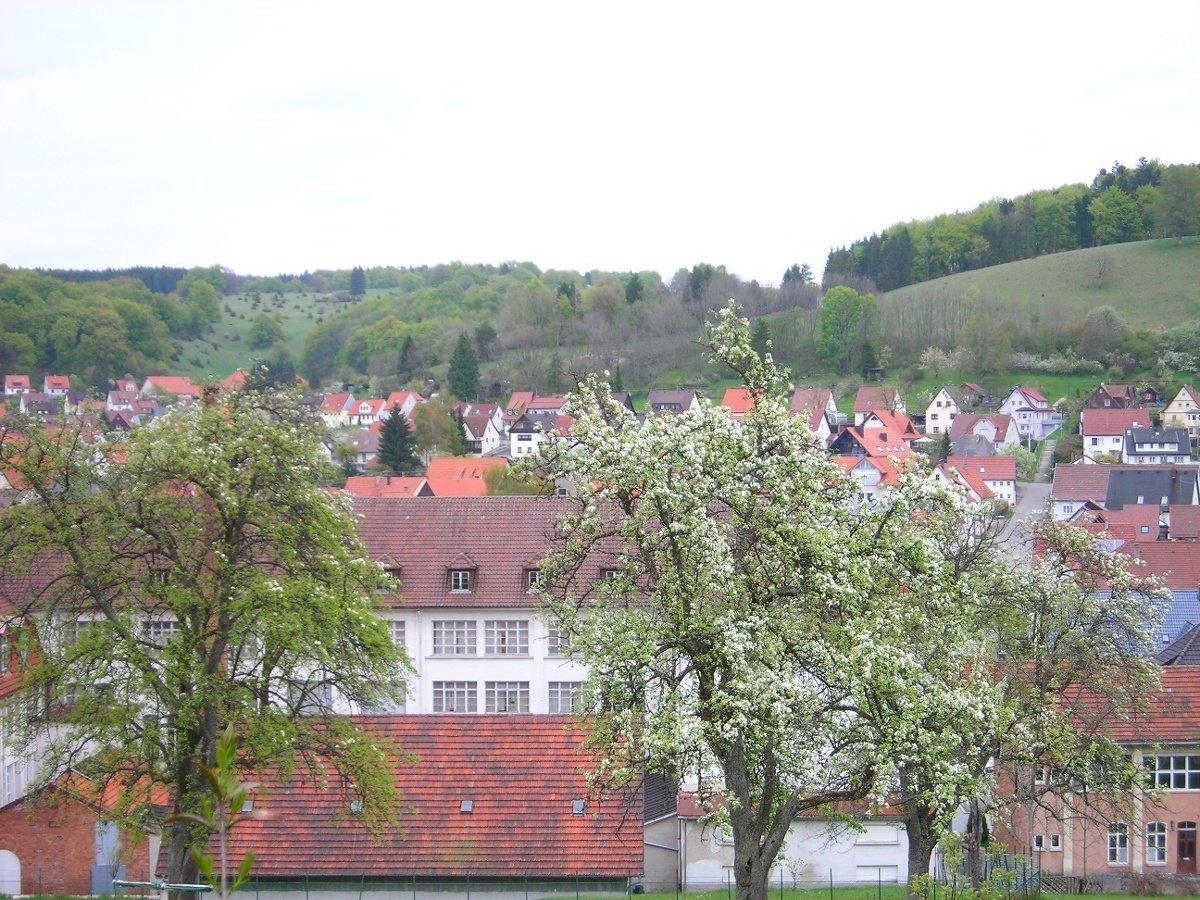 Blick auf Ringingen
