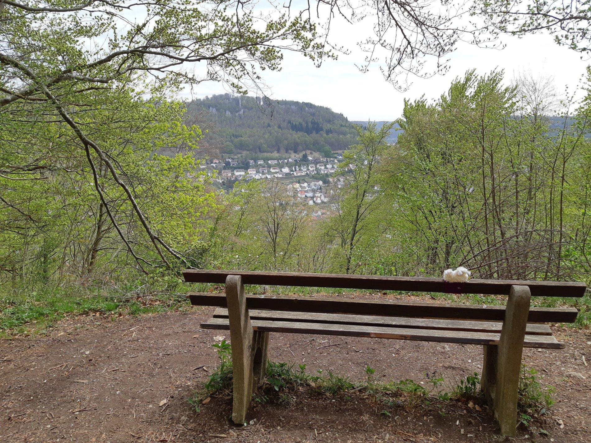 Aussichtspunkt Klarafels mit Ausblick auf Albstadt-Ebingen