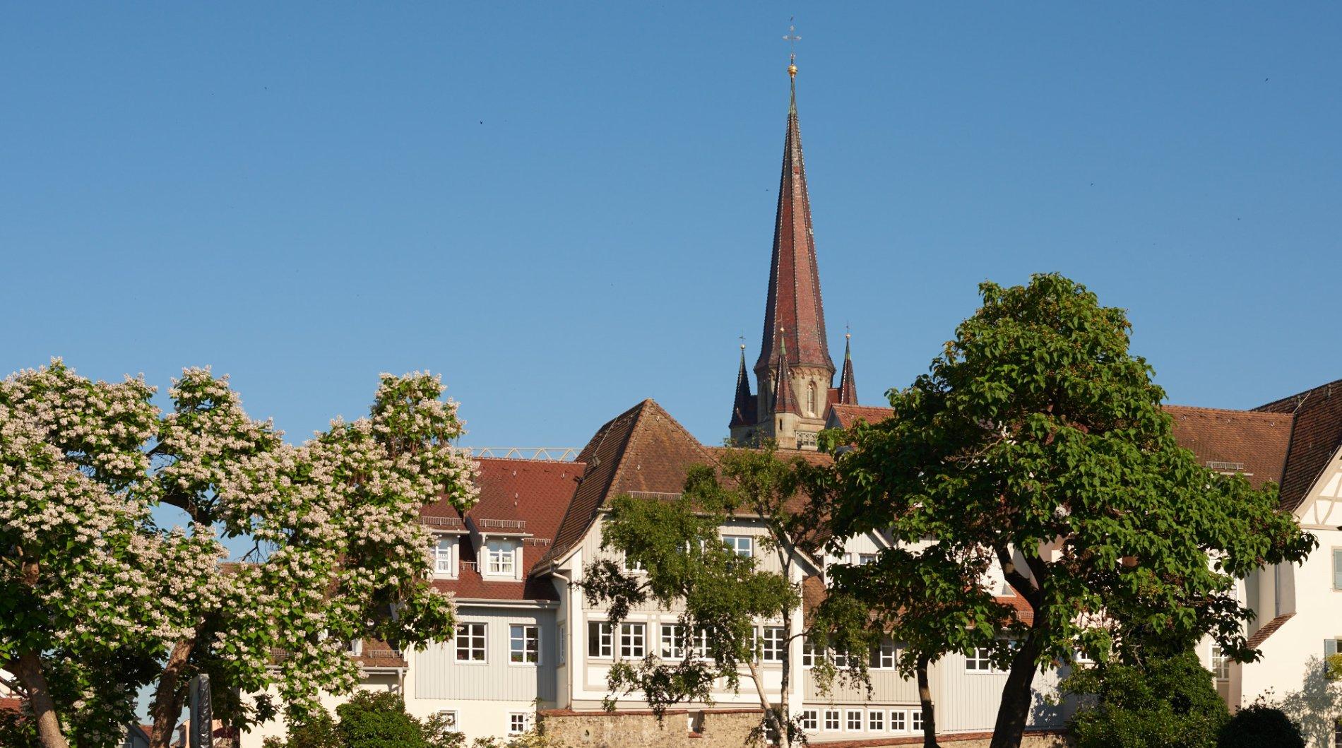 Blick vom Stadtgarten auf die Radolfzeller Altstadt