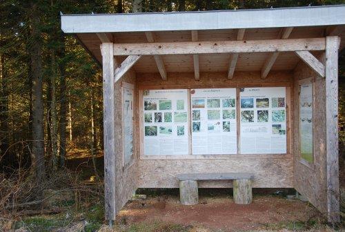 Moor-Infostation am Ennersbacher Moor