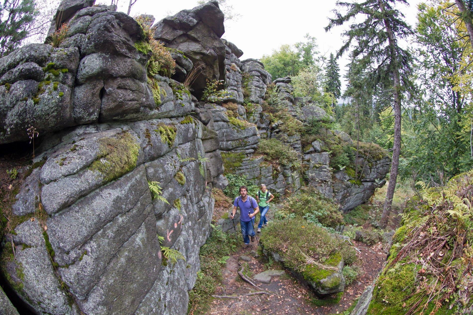 Nurtschweg Burgruine Schellenberg