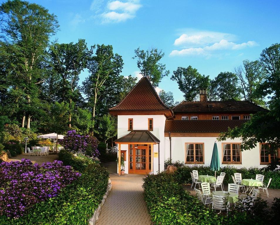 Sonnenbestrahltes Waldcafé mit schöner Terrasse