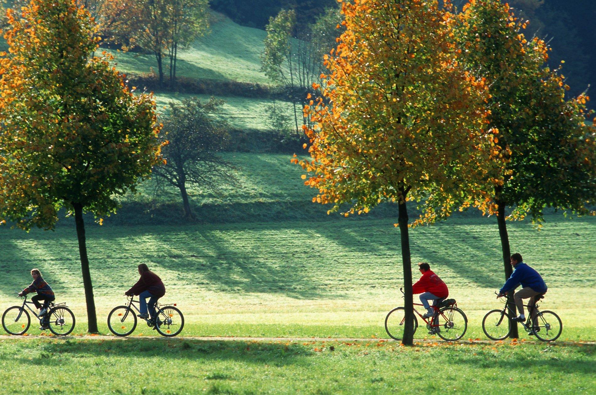 Freiburg Radfahrer Dreisamtal