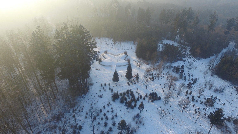 Asienbereich mit Tempel im Weltwald