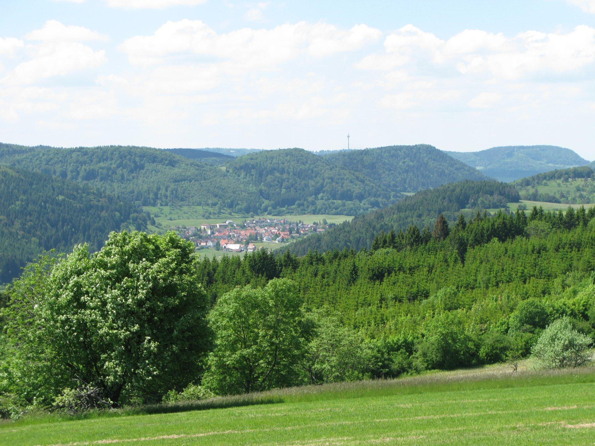 """Aussicht vom """"Lau"""" auf die umliegenden Berge"""