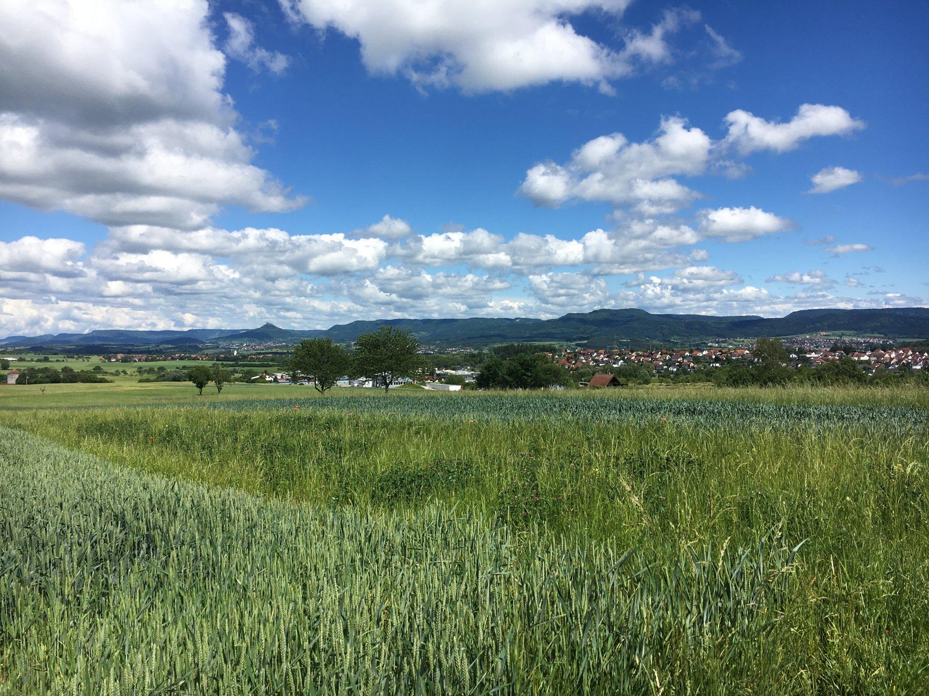 Felder mit Blick auf die Berge der Zollernalb