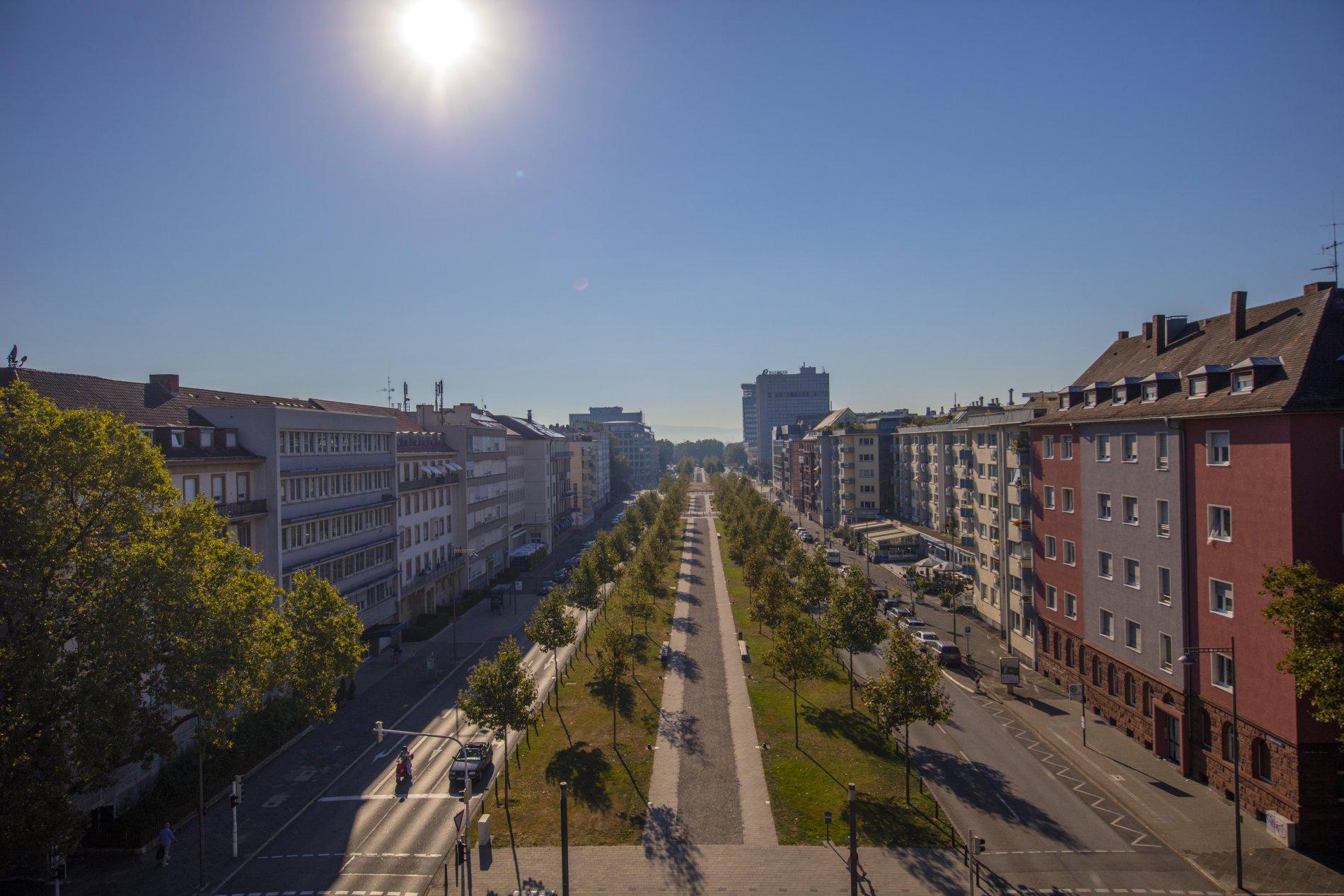 Rechts der Augustaanlage liegt die Schwetzingerstadt.