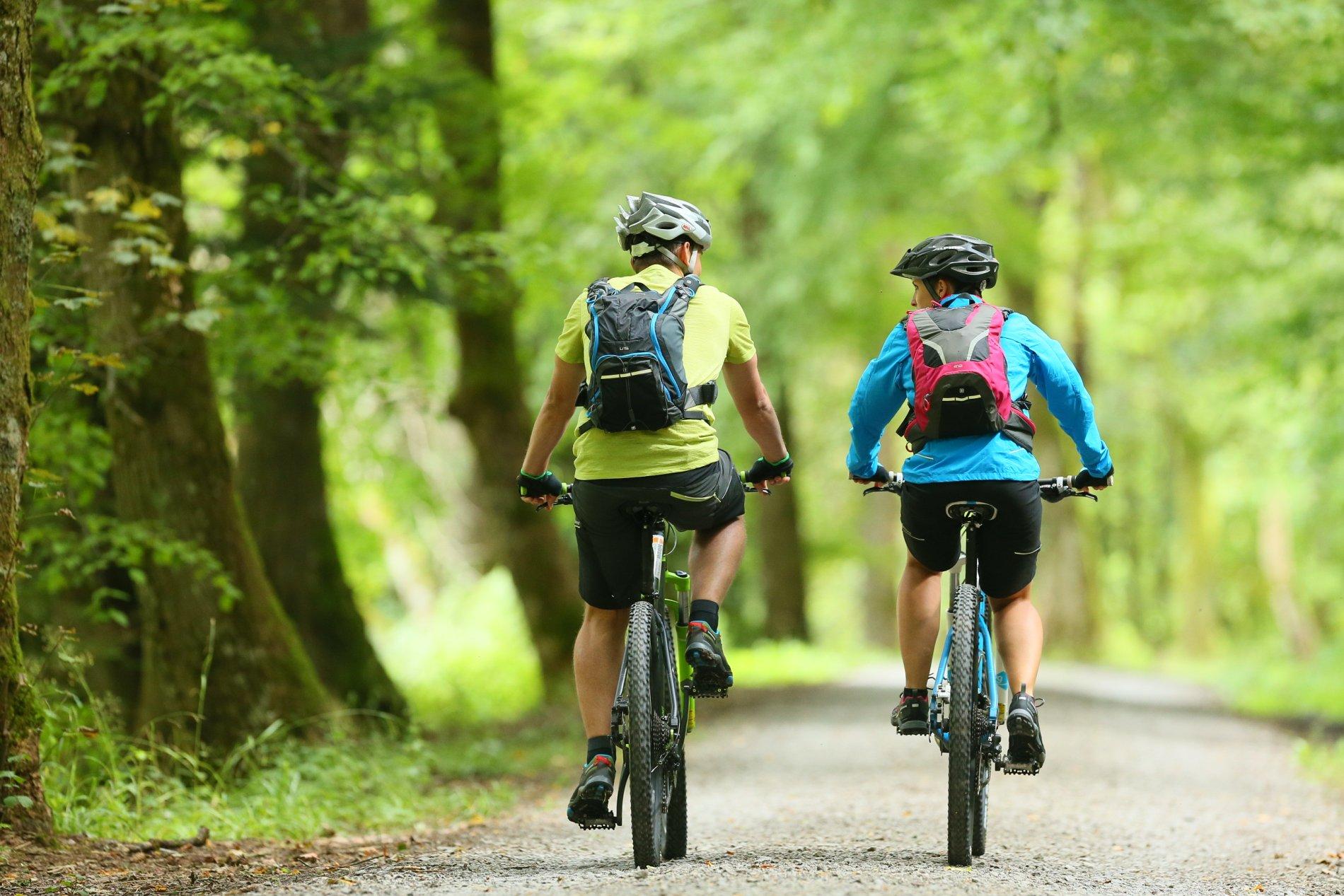 Fahrradverleih und E-Bike-Ladestationen in Bad Herrenalb