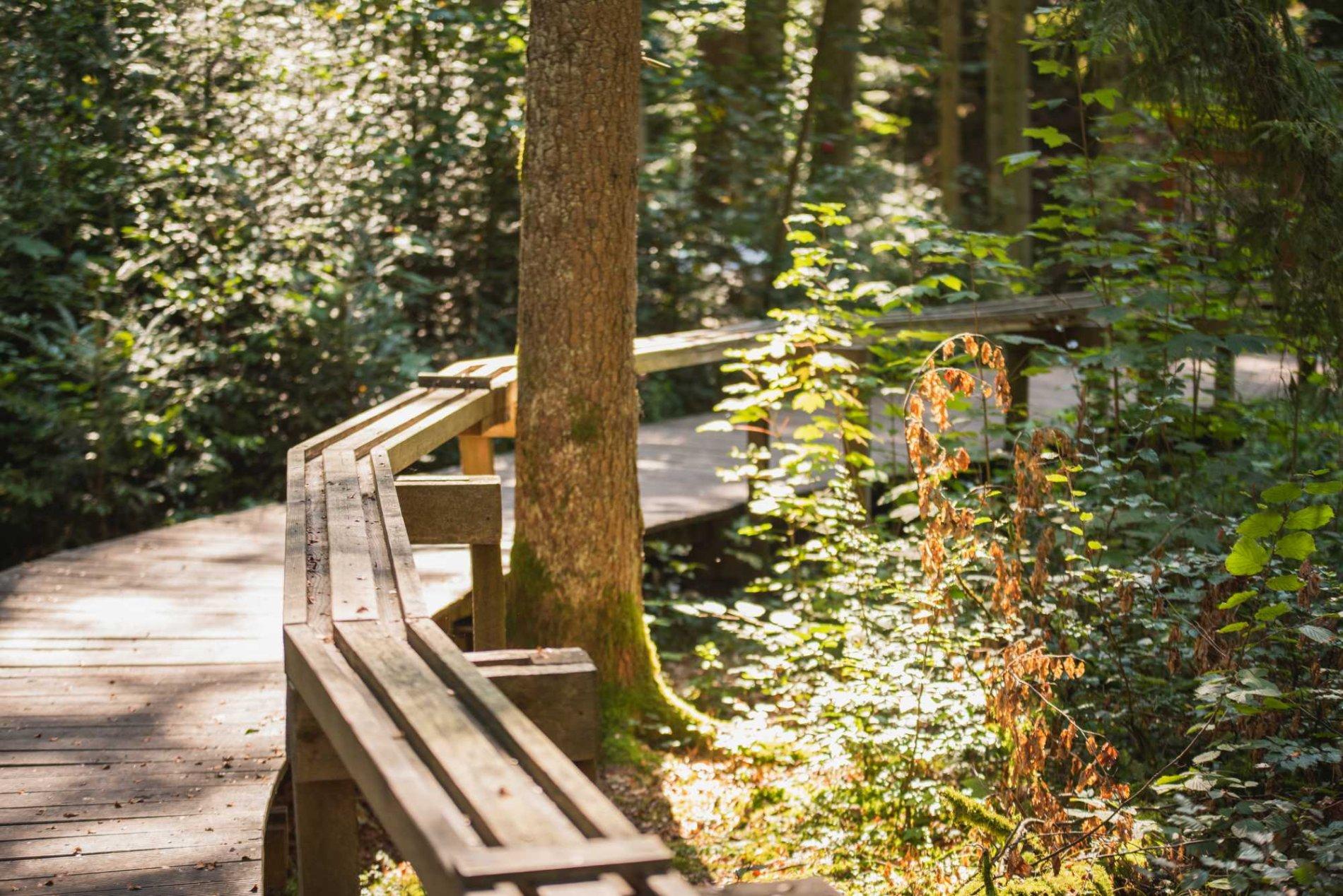 Waldkugelbahnweg