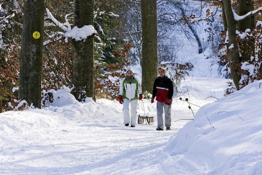 Winterwanderung mit Schlitten